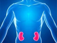 Які ознаки хвороби нирок