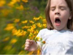 Перехресна алергія і її складові