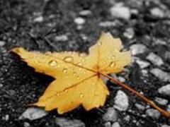 Сезонна депресія і її прояви